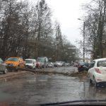 Silny wiatr łamie konary drzew. Ucierpiało kilka aut. Niektóre drogi i ulice są nieprzejezdne