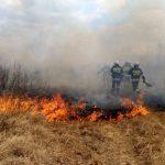 Pomagali w ratowaniu Biebrzańskiego Parku Narodowego. Strażacy i leśnicy: bez samolotów nie udałoby się opanować pożaru