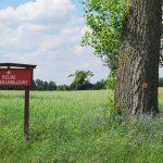 Welski Park Krajobrazowy zyskuje na atrakcyjności. Zakończono budowę ścieżek przyrodniczych i wieży widokowej