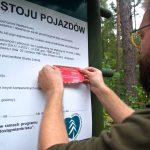 Leśnicy apelują do kierowców o przestrzeganie przepisów