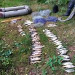 Kłusownik zatrzymany. Złowił 31 kg ryb w rezerwacie koło Iławy
