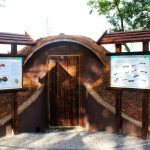 To pierwszy taki obiekt w Polsce. W Welskim Parku Krajobrazowym powstało mrowisko edukacyjne