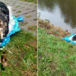 Zatrzymano 19-latka podejrzanego o zabicie psa. Mężczyzna skatował zwierzę, a następnie wrzucił do kanału