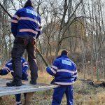 Posadzili 70 drzew na Mazurach. Najwięcej sadzonek pojawiło przy jeziorze Kisajno