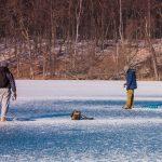 Strażacy ostrzegają: Pokrywa lodu jest jeszcze zbyt cienka