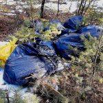 Śmieciarz ukarany najwyższym mandatem. Porzucone w lesie worki wypełnione były osłonami do kabli