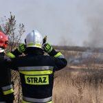 Rozpoczęła się akcja przeciwpożarowa w lasach