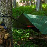 Od 1 maja będzie można spać w lesie