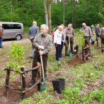 """Lasy Państwowe promują sadzenie drzew. Akcja """"Łączą nas drzewa"""" odbyła się w Świętej Lipce"""