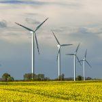 Kilkadziesiąt farm wiatrowych stanie w gminie Pasłęk