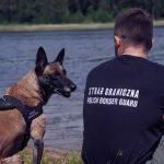 Kolejne psy trafią do służby w straży granicznej. Będą ekspertami w tropieniu narkotyków i materiałów wybuchowych