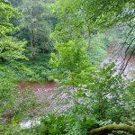 Lasy, Jeziora, Rzeki – Dolina Rzeki Wałszy