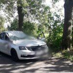 Tragedia podczas wichury. Zginął kierowca auta, na które przewróciło się drzewo