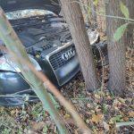 Kolizja na DK51. Kierująca audi uderzyła w drzewo