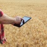 Dopłaty do materiału siewnego. Rolnicy mogą składać wnioski, są pewne warunki