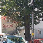 Wandale zaatakowali biuro poselskie Jerzego Wilka