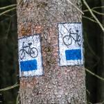 Śmierć rowerzysty nad jeziorem Długim w Olsztynie. Policja ustala tożsamość mężczyzny