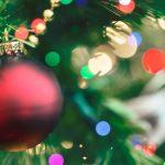 Desperacka kradzież choinek. Zagrozili sprzedawcy pobiciem i zabrali świąteczne drzewka